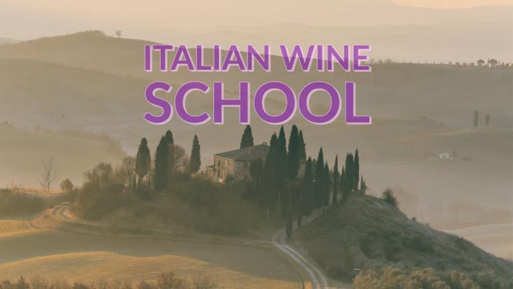 Tenuta Torciano Winery: Italian Wine School