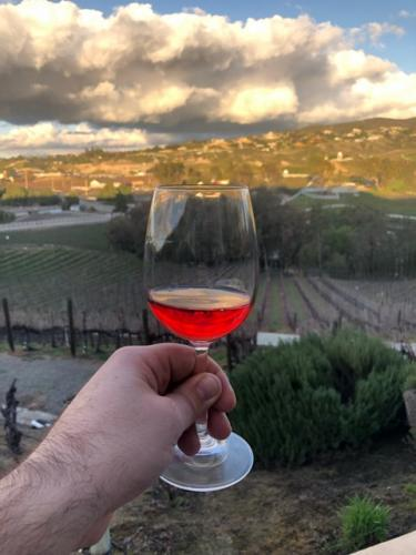 Pamo Valley - Pamo Valley Red Sangria - 2019